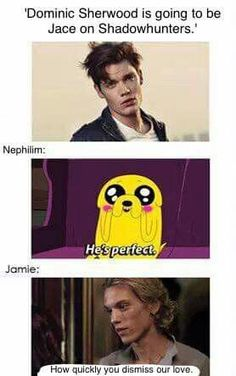 I will ALWAYS LOVE JAIMIE MORE THAN DOMINIC, JAIMIE IS THE REAL JACE