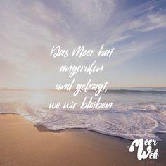 Visual Statements®️ Das Meer hat angerufen und gefragt, wo wir bleiben. Sprüche / Zitate / Quotes / Meerweh / reisen / Fernweh / Wanderlust / Abenteuer / Strand / fliegen / Roadtrip / Meer / Sand / Landschaft / Sonnenuntergang / Sonnenaufgang