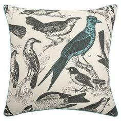 Ornithology Pillow