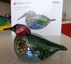 Toikka, Anna's Hummingbird, Museum of Glass, Tacoma, limited edition of it is difficult to catch the beauty of green glass Glass Museum, Glass Birds, Sculpture, Scandinavian Design, Finland, Glass Art, Ceramics, Pretty, Green