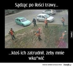 Very Funny Memes, Wtf Funny, Polish Memes, Funny Mems, Daily Funny, Read News, Best Memes, Haha, Have Fun