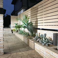 Dry Garden, Green Garden, Water Garden, Front Driveway Ideas, Plants Are Friends, Terrace Design, Backyard, Patio, California Style