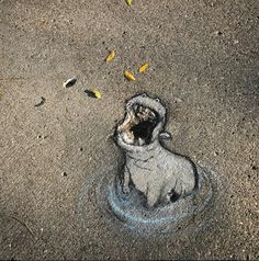David Zinn - New Work