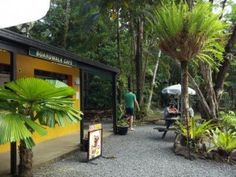 Boardwalk Cafe Cape Tribulation #travel #ecotourism #Queensland #Australia Queensland Australia, Safari, Cape, Ocean, Places, Travel, Mantle, Cabo, Lugares