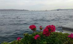 #istanbul #ortakoy