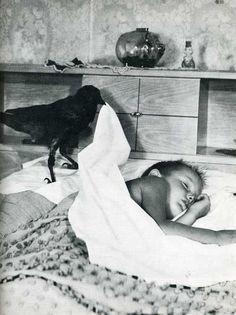 Data corvo Um desconhecido enfia um menino para a cama.  (Por finalização)