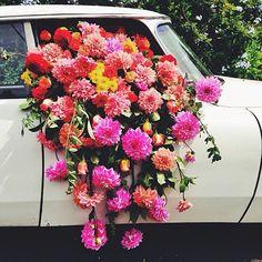 Sábados florales
