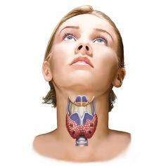 16 Signs Your Thyroid Is Out Of Whack  http://www.prevention.com/health/signs-your-thyroid-is-out-of-whack/slide/1
