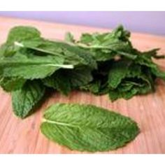 How to Preserve Mint Leaves
