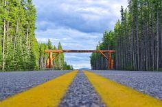 daxjustin-welcome-to-alberta What A Beautiful World, Adventure Photos, Wilderness, Paths, Trail, Bridge, Sidewalk, Wanderlust, Canada