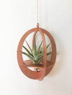 Wood Planter Box, Wood Planters, Air Plant Display, Wood Magazine, Small Wood Projects, House Plants Decor, Diy Pallet Furniture, Wooden Art, Plant Holders