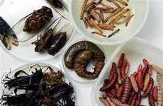 10 Edible Insect Delicacies -  From Gourmet Bug Restaurants to Sweet Arachnid Treats #insects #bugs #gross #ewww #bugfood #cuisine #weirdcuisine #food #exoticcuisine #exoticfood