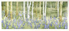 Bluebells, Wet Spring - Japanese waterbased woodblock - Laura Boswell