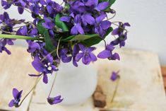 Perhaps you consider violets a weed, if you've ever had them take over your lawn or garden, but sweet violets used to be a mainstay of the floral industry.