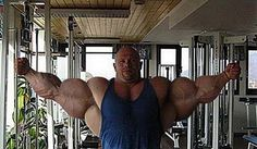 Bodybuilding Steroid - The latest legal steroids and bodybuilding nutritional supplement information and education with product about gaining muscle, strength and legal steroids.