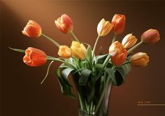 Photorealistic tulips created with vectors using CorelDraw x6