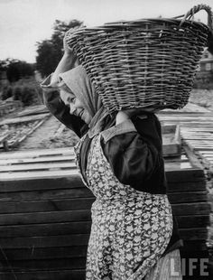 Greenhouse worker by Lisa Larsen.