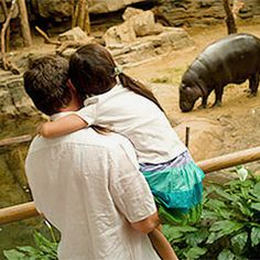 Plan a Visit to Franklin Park Zoo in Boston, MA | Zoo New England