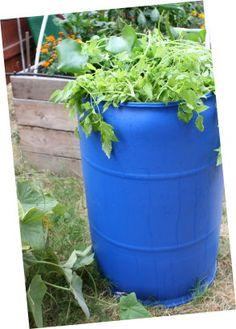 Raise Fish in A Barrel - One 55-Gallon Barrel - A Complete Ecosystem