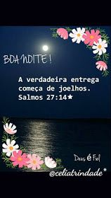 Nill de tudo um pouco: Boa noite! New Years Eve Party, Improve Yourself, Blog, Gifs, Biscuit, Tattoo, Animal, Night Prayer, Photos Of Good Night