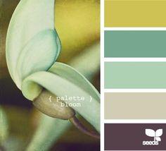 bloom palette // design seeds // perfect for a bathroom Scheme Color, Color Palate, Colour Schemes, Color Combos, Color Patterns, Colour Palettes, Design Seeds, Palette Design, Colour Board