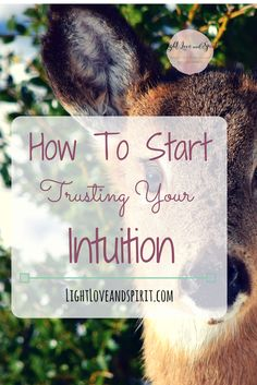 How To Start Trusting Your Intuition - Ashley Strong Psychic Development, Self Development, Spiritual Enlightenment, Spiritual Awakening, Psychic Quotes, Intuition Quotes, Learning To Trust, Happiness, Mind Body Soul