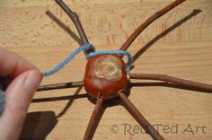Horse Chestnut spider web/dream catcher