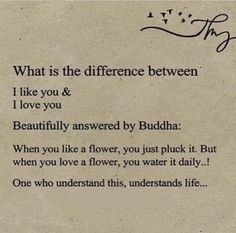 When You Love, You And I, Spiritual Growth, Home Remedies, First Love, Mindfulness, Wisdom, Sayings, Words