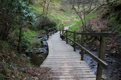 The wooden walkway over the Goyt on the footpath leading from the ruins of Errwood Hall to St Joseph's Shrine. The hilltop graves of the Grimshawes are up the slope on the left. Wooden Walkways, Valley View, Peak District, St Joseph, Landscape Photographers, Garden Bridge, Walks, National Parks, Places To Visit