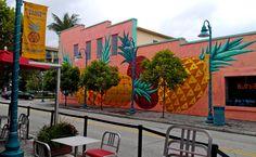 Pineapple Grove (Delary Beach, Florida)