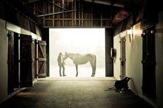 Sydney Polo  club for an Equestrian style wedding