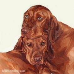"""""""Homer & Tilly"""" - portrait of two Hungarian Vizslas This painting of the two vizsla shows Homer resting his head on his pal Tilly. He is the gentle one and she is the cheeky one! 14x14in - oil painting on gallery style canvas"""