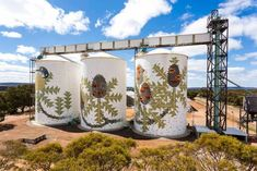 The silo art movement started in Western Australia in 2015 with a tourist trail is about to launch and other states start to take notice. Building Art, Water Tower, Outdoor Art, Street Artists, Public Art, Western Australia, Urban Art, Beautiful Landscapes, Art Projects