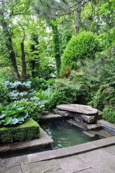Garden and landscaping trees and plants around the garden Pond Garden and lands Ponds For Small Gardens, Fish Pond Gardens, Water Gardens, Backyard Water Feature, Ponds Backyard, Garden Ponds, Backyard Ideas, Koi Ponds, Garden Water