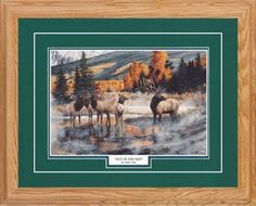 Northern Promotions Framed Art - Out of the Mist by Andrew Kiss