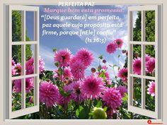 Devocional Dádivas do Senhor: Deus não promete apenas paz, mas paz perfeita. (en...