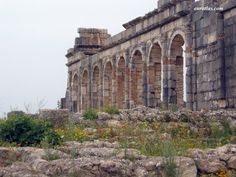 The Ruins of Volubilis, an Antique Roman Town, Morocco