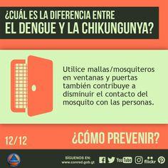 Para prevenir este tipo de epidemias utilice mallas/mosquiteros en ventanas y puertas también contribuye a disminuir el contacto del mosquito con las personas.