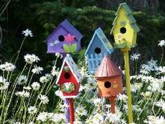 Cute Bird House for a flower bed.