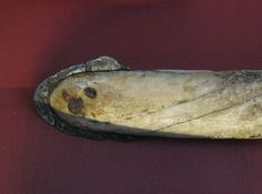 Photo of an Inuit lance with an iron meteorite head (Cape York meteorite).