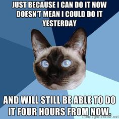 Chronic Illness Cat | Just because I can do it now doesn't mean I could do it yesterday and will still be able to do it four hours from now.