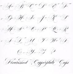 Hybrid Copperplate Script - Flourished Capitals