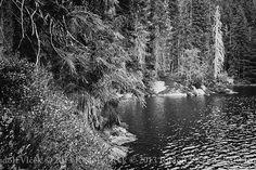 Lake / Nature