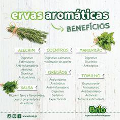 Supermercados Brio Biológico - Benefícios das Ervas Aromáticas