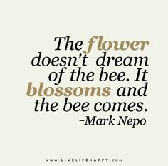 The flower doesn't dream of the bee. It blossoms and the bee comes. - Mark Nepo