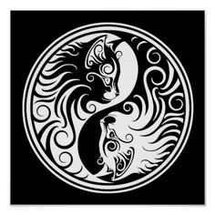 White and Black Yin Yang Cats Poster