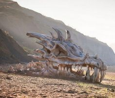 A giant dragon skull ended up on a beach for this campaign. GAME OF THRONES IS REAL!