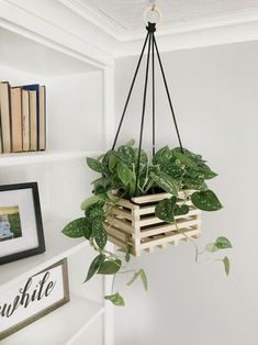 Ideas apartment balcony furniture hanging plants for 2019 Diy Hanging Shelves, Hanging Planters, Diy Planters, Hanging Baskets, Bedroom Plants, Bedroom Decor, Design Bedroom, Vintage Home Decor, Diy Home Decor