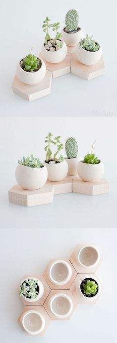 Hexagon Modular Planters - build your own chain of green life indoors with this unusual little planter. With a wood base and freeform ceramic orb planter, it looks great alone or grouped with fellow succulents. They can be arranged in a chain or honeycomb for some variety.