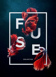 Key Art created for Fuse Collective's new website launch
